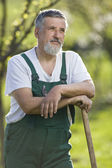 Portrait of a senior man gardening in his garden — Stok fotoğraf