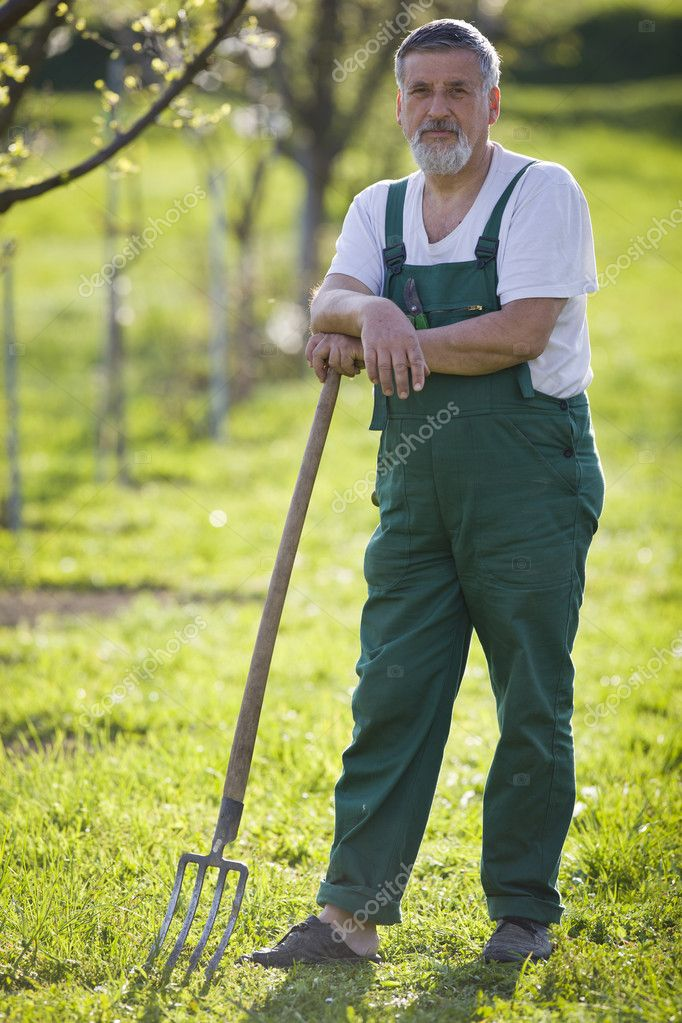 Portrait of a senior man gardening in his garden (color toned image) — Stock Photo #6148604