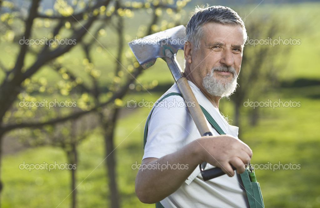 Portrait of a senior man gardening in his garden (color toned image) — Stock Photo #6148629