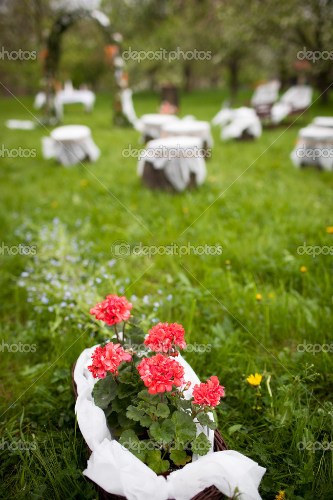Splendid wedding venue - blossoming orchard on the 1st of May  Stock Photo #6149071