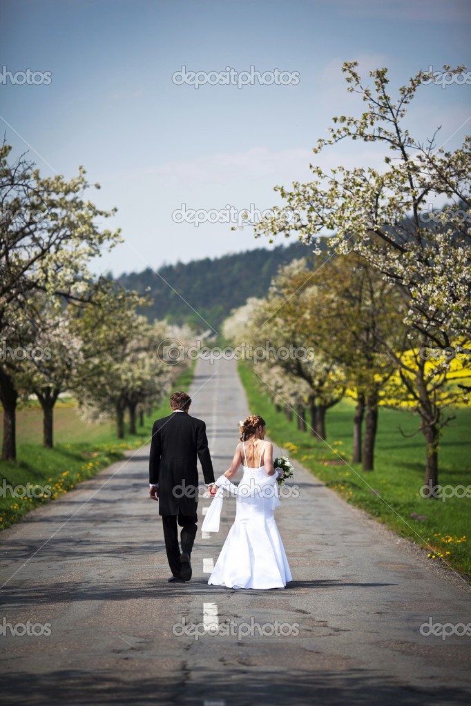 Young wedding couple - freshly wed groom and bride posing outdoors on their wedding day — Photo #6149212