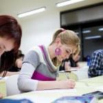 jolie femelle étudiant assis dans une salle de classe pleine de stu — Photo