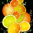 CITRON MIX — Stock Photo