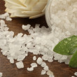 Bath salt — Stock Photo #5587732