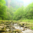 Landscape with mountain stream in forest of Zhangjiajie - Foto de Stock