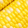 Royalty-Free Stock Photo: Corn close-up.