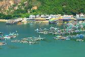 Sea view in Hong Kong from hill top — Foto de Stock