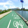 Bicycle lane with white bicycle sign — Stockfoto #6070793