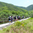 Asian hiking team in mountains of Hong Kong — Stock Photo