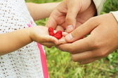 Berries in the hand — Stock Photo