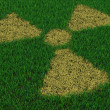 Radiation symbol from thatch on green grass — Stock Photo