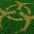 Biohazard symbol from thatch on green grass — Stock Photo