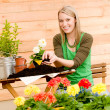 Gardening woman planting spring flower - Stock Photo