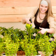 Gardening woman watering plants in spring — Stock Photo