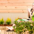 Garden woman terrace enjoy cup coffee spring — Stock Photo #5572861