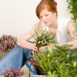 Summer garden terrace redhead woman potted flower - Stock Photo