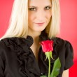 Elegant woman hold red rose — Stock Photo #5657381