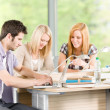 Group of young high school students learning — Stock Photo #5879554