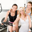 Fitness young girls spinning at gym posing - Stock Photo