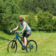 Stock Photo: Sport mountain girl biking uphill sunny meadows