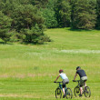 Sport mountain couple biking downhill sunny meadows — Stock Photo