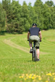 Sportive man mountain biking downhill sunny meadows — Foto Stock