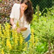 Beautiful woman sunny garden care yellow flowers — Stock Photo #6441152