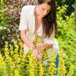 Beautiful woman sunny garden care yellow flowers — Stock Photo #6441156