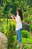 Summer gardening young beautiful woman cut flower — Stock Photo