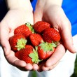 Royalty-Free Stock Photo: Strawberries in hands photo illustration