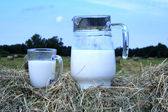 Foto of milk and glass on haystack — Stock Photo