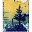 Stock Photo: Christmas tree polaroid transfer