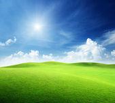 Champ d'herbe et ciel parfait — Photo