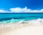 θάλασσας και της άμμου — Φωτογραφία Αρχείου