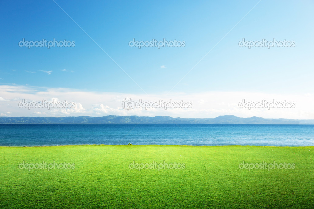 Green grass and caribbean sea — Stock Photo #5981167