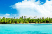 Palms on island and caribbean sea — Stock Photo