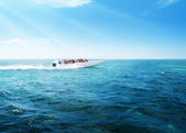 Speed boat in Caribbean sea — Stock Photo