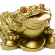 Feng Shui frog sitting on money. — Stock Photo