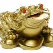 Feng Shui frog sitting on money. — Stock Photo #6356237