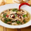 Stock Photo: Spicy mushroom soup.