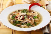 Spicy mushroom soup. — Stock Photo