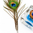 Stock Photo: Peacock feather quill and inkwell