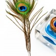 Peacock feather quill and inkwell — Stock Photo #5414880