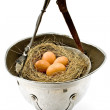 Nest with eggs in old army helmet — Stock Photo