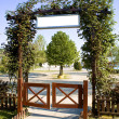 Stock Photo: Green floral arch gate