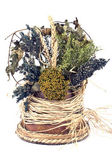 Bouquet of dry herbs — Stock Photo