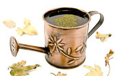 Small Watering can with dry leafs — Stock Photo