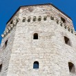 Old tower of Belgrade fortress - Stock fotografie