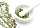 White ceramic mortar and pestle with rosemary — Stock Photo