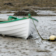 White rowboat — Stock Photo #5892611